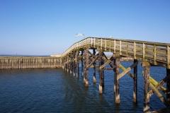 Boardwalk at Westport, WA
